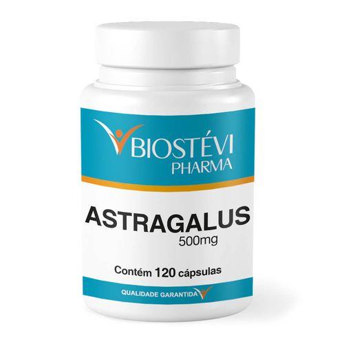 Astragalus-500mg-120capsulas