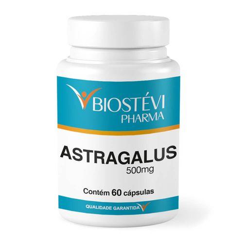 Astragalus-500mg-60cap